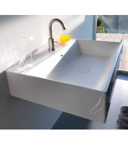 Coracril Dual Bathroom Sinks